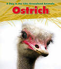 Ostrich by Louise Spilsbury (Hardback, 2011)