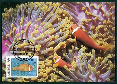 Geschickt Malediven Mk 1986 Fauna Fische Fish Anemonenfisch Anemonefish Maximumkarte En30 Unterscheidungskraft FüR Seine Traditionellen Eigenschaften