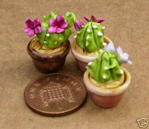 Échelle 1:12 3 petits Céramique cactus en pots tumdee Dolls House Plant Accessoires