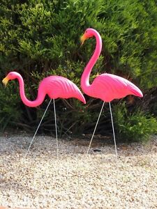 Funky Orig Signed Don Featherstone Pink Flamingo Garden