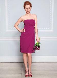 BNWT-Bhs-16-18-FUCHSIA-Pink-MADELEINE-Chiffon-Short-Bridesmaid-Party-Dress-90