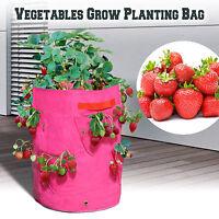 3pc Strawberry Grow Bags Herb Planter Patio Garden Yard Seedling Pot Tub