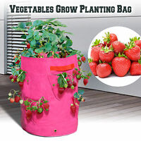 3pc Strawberry Grow Bags Herb Planter Patio Garden Yard Seedling Pot Tub