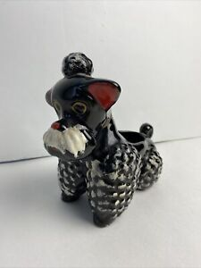 Black-vintage-mid-century-modern-ceramic-poodle-planter-with-white-painted-curly