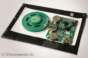 Soundmodul mit Lichtsensor oder Taster und USB, Soundrecorder, Voicemodul