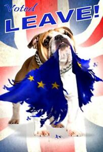 Vote-Leave-Union-Jack-Brexiteer-British-Bulldog-Brexit-Flag-Fridge-Magnet