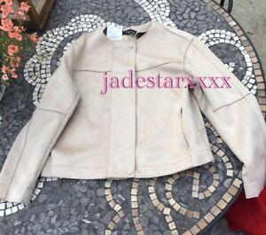 Suede Jacket Bnwt Zara Medium M 10 Sand Faux New qEwZ6OWt