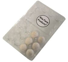 6 PACK SPECKLED CERAMIC DUMMY BIRD QUAIL NEST EGG HATCHING CRAFT NESTING DOVE