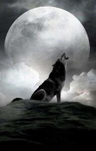 Impresión En Marco Lobo Aullando A Grande Luna Llena Gótico
