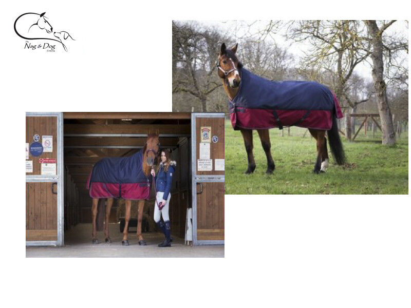 Equitheme Tyrex 1200D Outer No Fill Light Weight High Neck Horse Turnout Rug