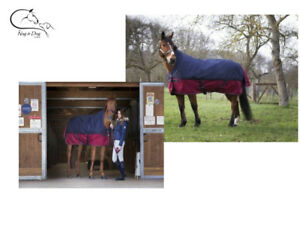 Details About Equitheme Tyrex 1200d Outer 150g Fill Light Weight High Neck Horse Turnout Rug