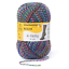 REGIA 4-fädig  color 50g Sockenwolle Farbe 04067 indian night color