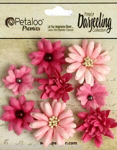 Mini-Mix-PINK-8-Teastained-Paper-Flowers-20-35mm-across-Darjeeling-Petaloo-Box-H