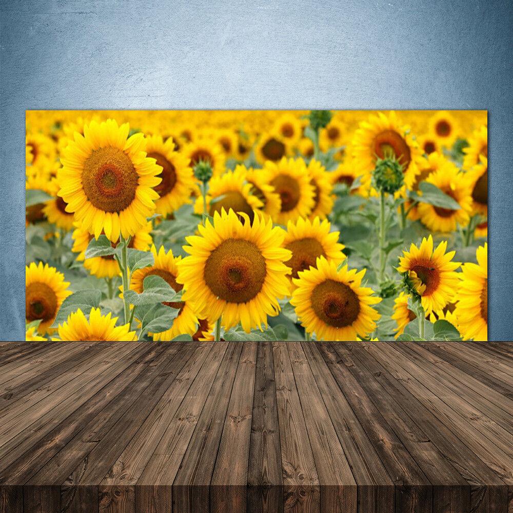 Crédence de cuisine en verre Panneau 140x70 Floral Tournesol