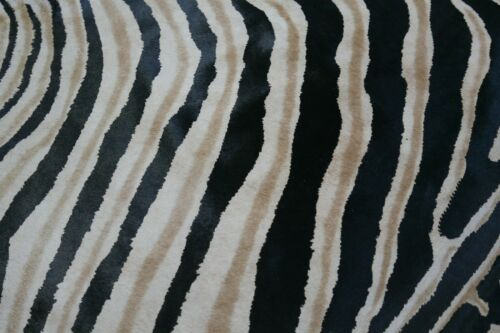 Zebra Cowhide Rug Size 7.4/' X 6/' Brand New Genuine Zebra Print Cow Hide Rug