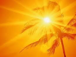 Sunshine-Treasures1