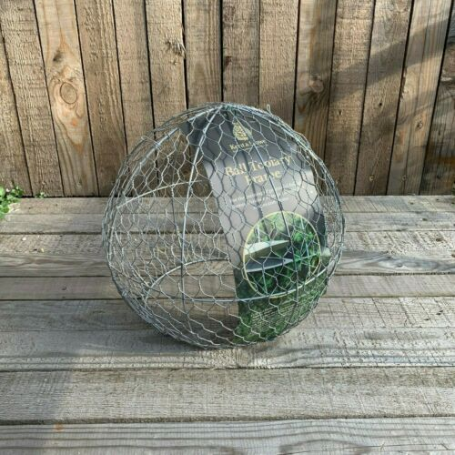 Perennial Durable Galvanised Wire Kent /& Stowe Ball Topiary Frame