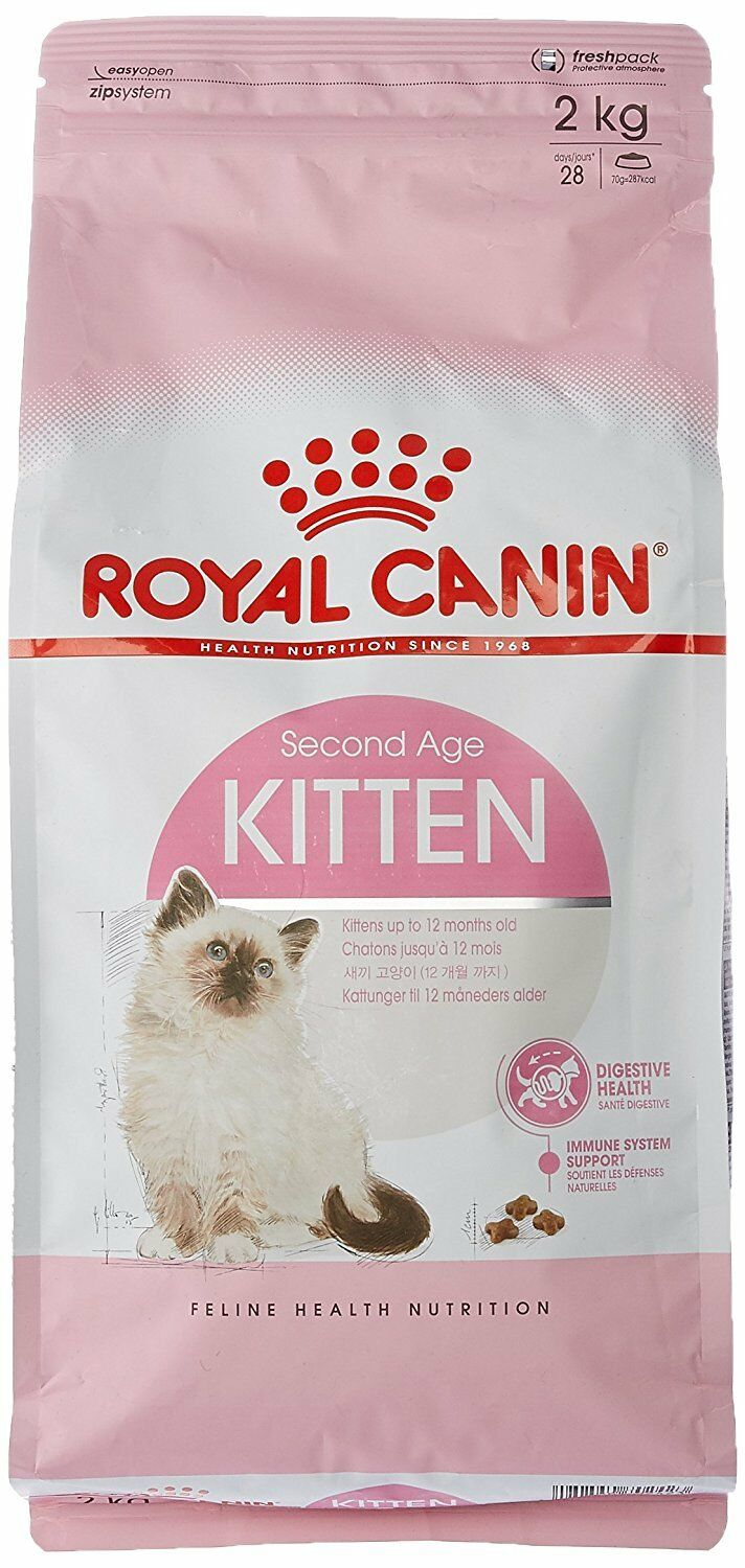 Royal Canin Gatos aged 4 to 12 meses Old Alimento 36 Seco bmix 2 kg