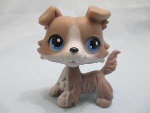 Littlest Pet Shop Grey Collie Blue Eyes #67 RARE lps Dog Puppy 100% Authentic