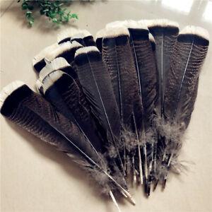 Wholesale-unique-Wild-Turkey-Queue-Plumes-6-12-in-20-30-cm-10-100pcs