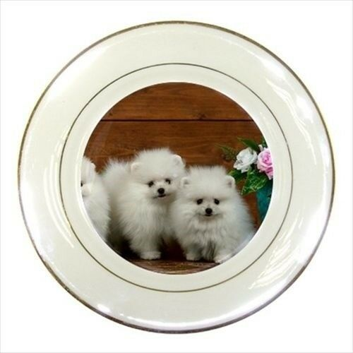 Cute Pomeranians Porcelain Plate w/ Display Stand - Puppy Dog