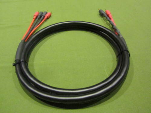 Canare 4S11 Star Quad 11 AWG BiWire Speaker Cable 8 Ft. 2 to 4 Pin