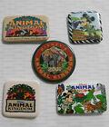 1998-2002 Disney Animal Kingdom 5 PARK BUTTONS Safari Mickey Mouse, Cast Member+