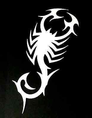 Scorpion Poisonous Animal Vinyl Die Cut Car Decal Sticker-FREE SHIPPING