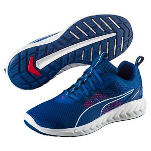chaussures puma course homme
