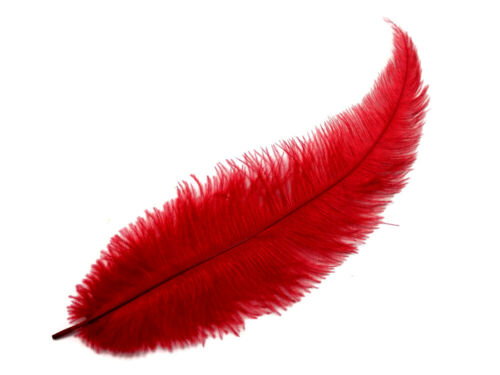 Red Mini Spads Ostrich Chick Wing Mardi Gras Halloween Centerpiece 20 Feathers