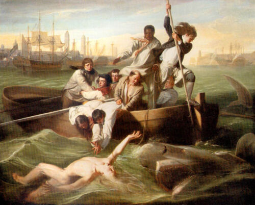 WATSON AND THE SHARK RESCUE ATTACK IN HAVANA PAINTING BY JOHN COPLEY  REPRO