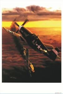 Details about World War II Dog Fight - Patriotic Air Force Fighter Plane  Military POSTER