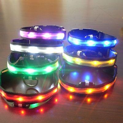 Pets Dog LED Lights Flash Nylon Collar Night Safety Waterproof Red L Adjustable