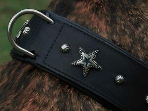 Collier en cuir Collier étoiles large M L XL Gr.   Dog Star Clouté Tysons Noir