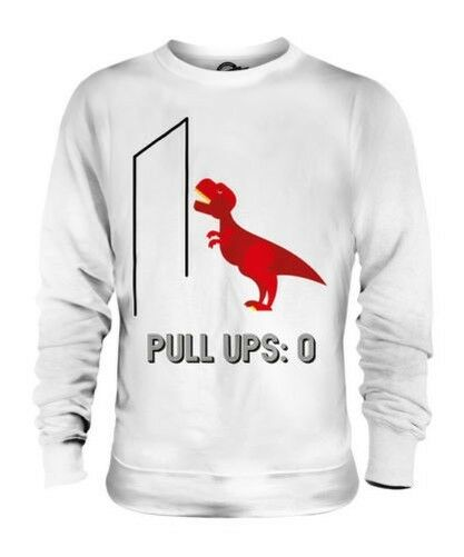 T-REX PULL UPS UNISEX SWEATER TOP GIFT FUNNY DINOSAUR