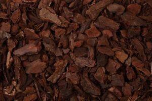 10 Litre Orchidée écorce Chips écorce De Pin Haute Humidité Reptile Vivarium Substrat-afficher Le Titre D'origine R2evazdc-10105445-722625510