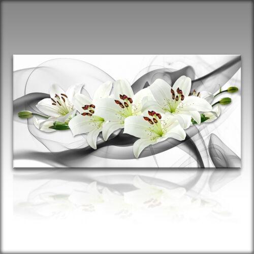 LEINWAND KUNSTDRUCK XXL Bilder Modern Blumen 4140 VnArtist