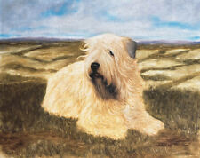 SOFT COATED WHEATEN TERRIER DOG LIMITED EDITION PRINT