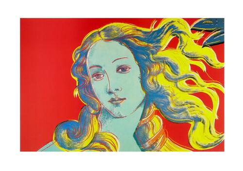 Andy Warhol Venus rot Poster Kunstdruck Bild 70x100cm