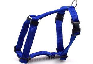 Harnais-NYLON-CLASSIC-Bleu