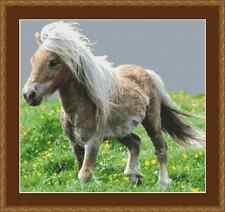 Pony Cross Stitch Kit