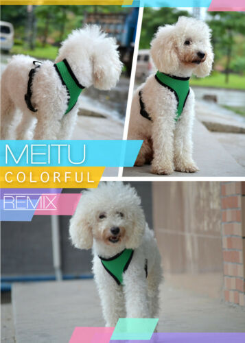Pet Dog Harness Lead Mesh Vest Travel Padded Seat Belt For Small to Medium Puppy