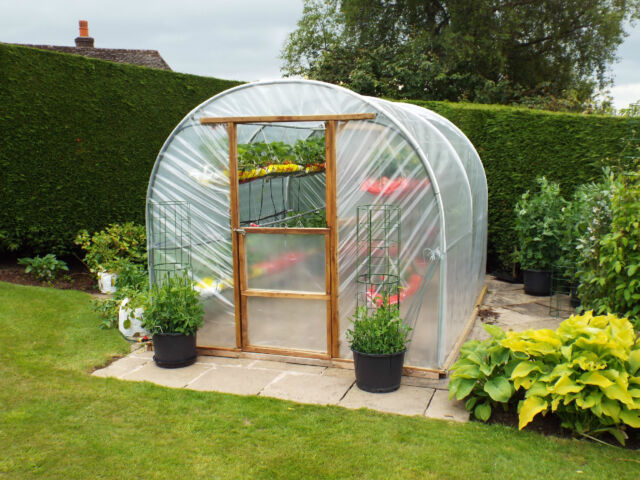 10ft wide Polytunnel Replacement UVI Covers Polythene Lumisol by British  Visqeen