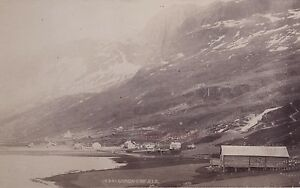 Norvegia? Jeld Grindaheimf Norway Vintage Stampa Albumina Ca 1880