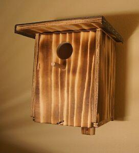 nistkasten nisthilfe vogelhaus stare starennistkasten ebay. Black Bedroom Furniture Sets. Home Design Ideas