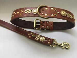 collier pour chien staffie
