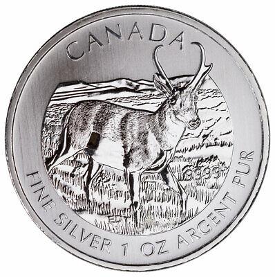 0.9999 SLV 2013 Canadian $5.00 Pronghorn Antelope 1oz.