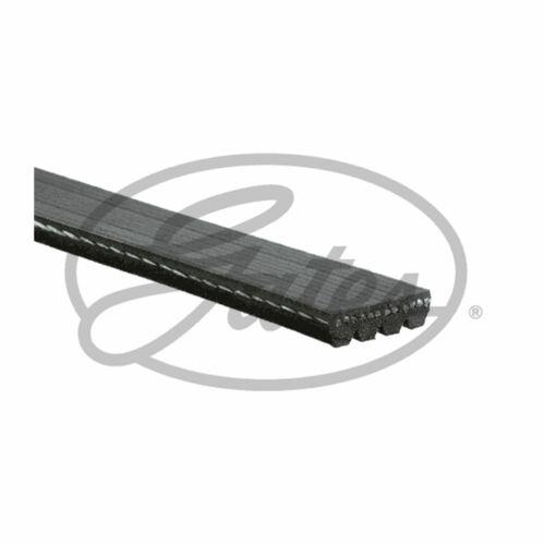 Fits Fiat Seicento 187 1.1 Genuine Gates Alternator V-Ribbed Belt