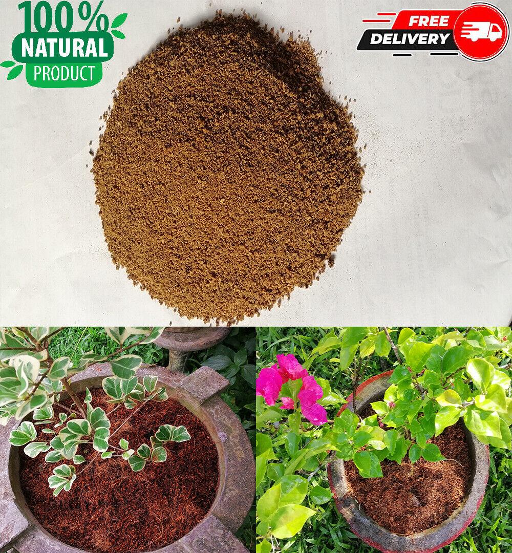 Coco Peat Hydroponic growing media 100% Organic Natural Ceylon ECO friendly