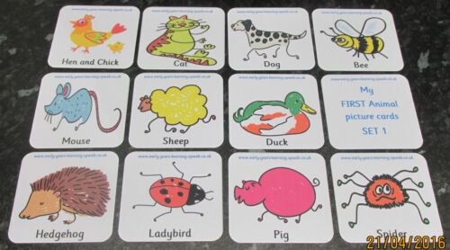 My First Bumper Pack Animals Flash cards FUN Learning ~ Babies /& Toddlers